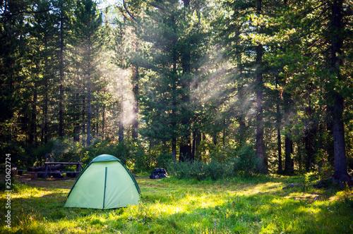 Obraz na płótnie white touristic tent in a forest