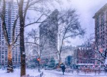 Snow Falling In Madison Square Park. Flatiron Building.