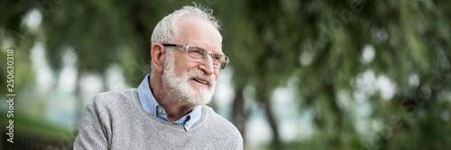 happy smiling senior man in grey pullover and glasses in park Wallpaper Mural