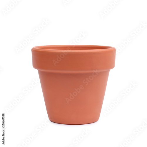 Ceramic pot for house plants. Canvas