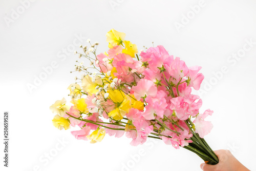Fotografie, Obraz  スイートピーの花束 Flowers sweet pea bouquet