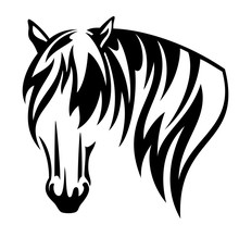 Shire Draught Horse With Long Mane Black And White Vector Head