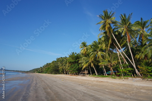 Foto op Canvas Tropical strand Beautiful Beach with Coconut tree in Chumphon, Thailand