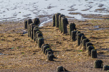 Old Jetty Posts At The German ...