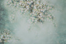 Spring Photo Background Ideal ...