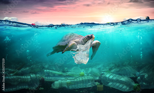 Tuinposter Schildpad Plastic Pollution In Ocean - Turtle Eat Plastic Bag - Environmental Problem