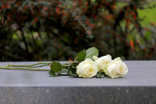 White Roses On Gravestone At M...