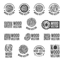 Vector Hand Drawn Sketch Of Abstract Wood Texture Illustration On White Background