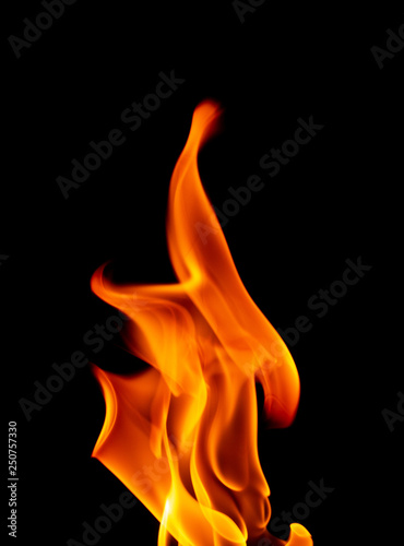 Close Up of Burning Flames on a Black Background