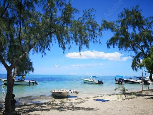 Mauritius, Île aux Bénitiers Canvas Print