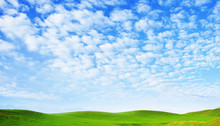 Sunny Summer Landscape. Spindrift Clouds. Cirrus Clouds Against The Blue Sky Above The Hills Covered With Green Fresh Grass