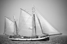 Black And White Sailboat