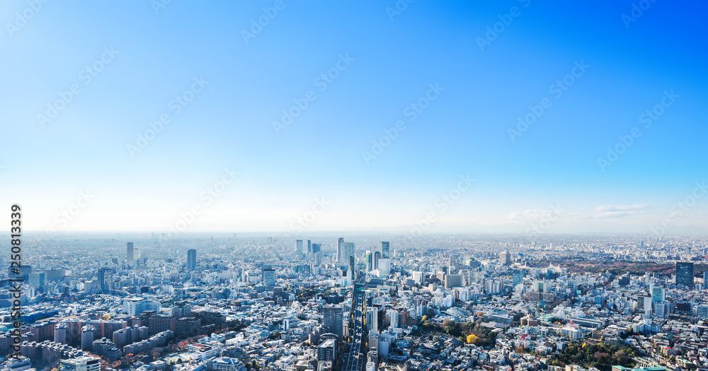 Fototapety, obrazy: panoramic city skyline aerial view in Tokyo, Japan