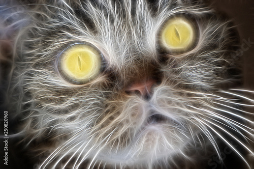 Fractal portrait of a domestic brown cat with yellow eyes on a contrasting black Wallpaper Mural
