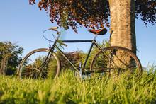 Vintage Bike In Long Grass