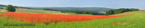 Fotografia  Eifel Landschaft Panorama