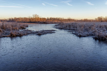 Frozen Marsh Pond In Occoquan ...