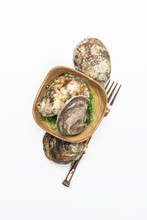 Oysters On White