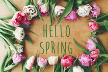 Hello Spring Text Sign On Beau...