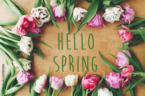 Obraz na plátně Hello spring text sign on beautiful double peony tulips frame flat lay on wooden table