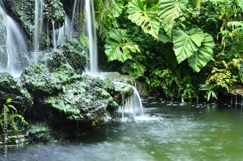 Foto auf Gartenposter Wasserfalle water fall in the garden