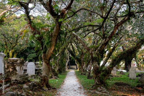 Photo  Protestant cemetery, Georgetown, Malaysia