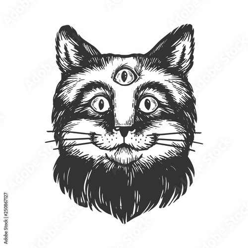 Photo sur Toile Croquis dessinés à la main des animaux Cat with three eyes sketch engraving vector illustration. Scratch board style imitation. Hand drawn image.