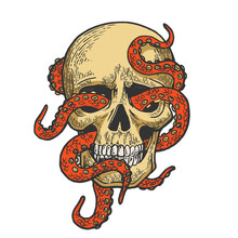 Octopus In Human Skull Color S...