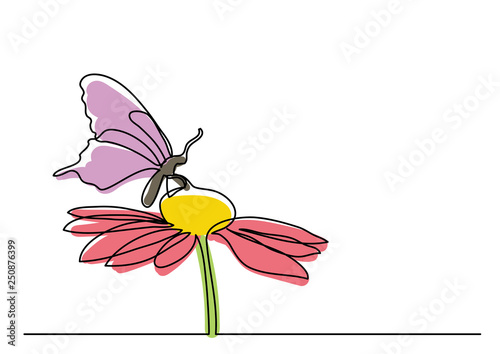 Obraz single line drawing of butterfly and flowers - fototapety do salonu