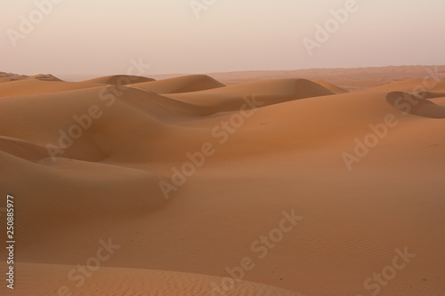 Fototapety, obrazy: Dunes of the Wahiba Sand Desert at dawn (Oman)
