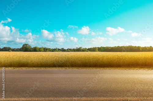 Photo Stands Turquoise empty country road with field and rural landscape background on a sunny day -