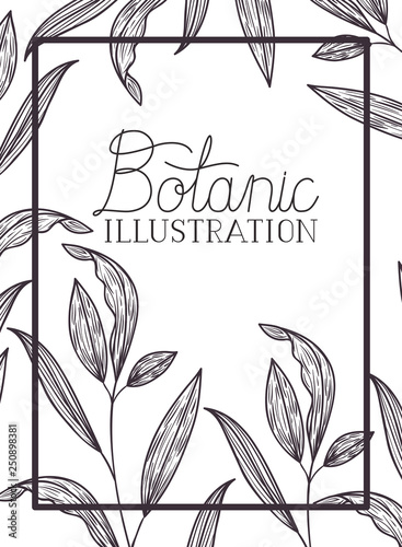 botanic illustration label with plants Canvas
