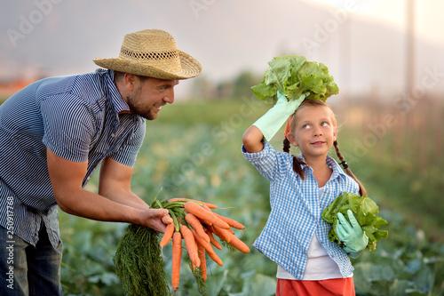 Fotografie, Obraz  Farmers