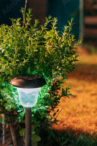 Aluminium Prints Garden Solar Garden Light, Lantern In Flower Bed. Garden Design. Solar Powered Lamp