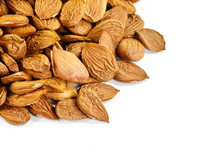 Dry Apricot Nut On White Background.