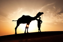 Silhouette Of Man With Camel I...