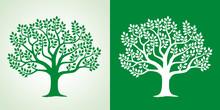 Illustration Set Of Leafy Tree