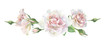 Three pink watercolor roses on a white background. For greetings and invitations, weddings, birthdays and mother's day