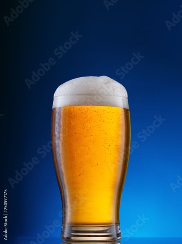 Glass with light beer on blue background Canvas Print