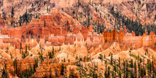 Utah Bryce Canyon Panorama
