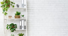Office Bookcase With Plants An...
