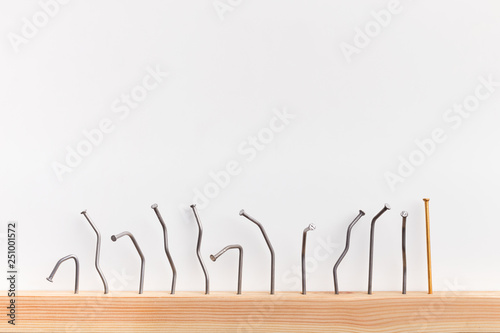 Fototapeta Straight golden nail with row of bent ones obraz na płótnie