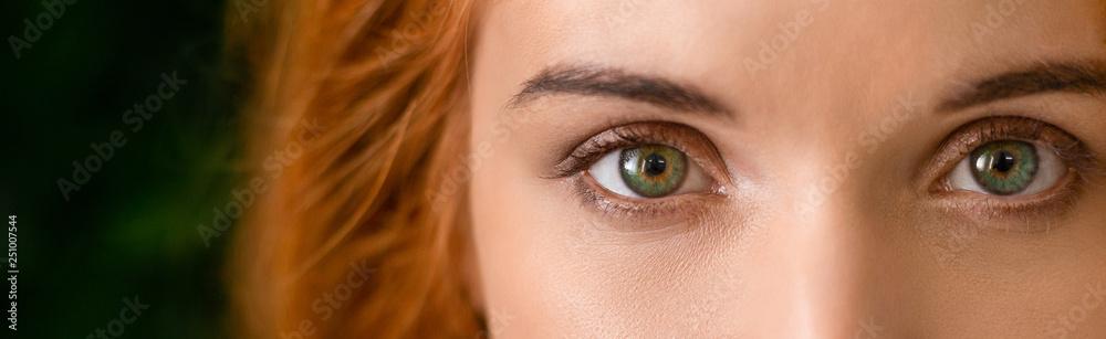 Fototapeta Green eyes of young redhead woman panorama