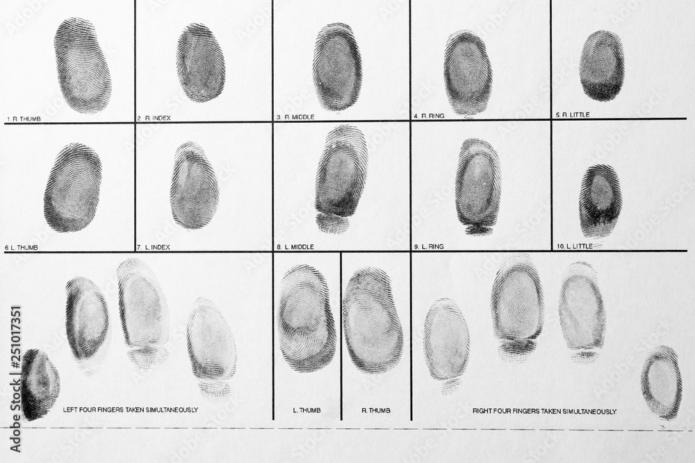 Fototapeta Police form with fingerprints, top view. Forensic examination