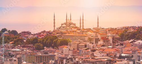 Fotografia  Panorama of Istanbul with mosque in Turkey