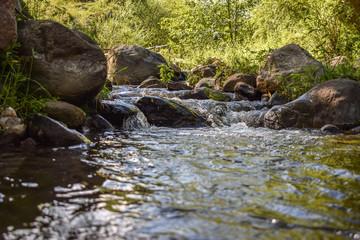 Naklejka na ściany i meble river in the woods, Tafi del Valle, Argentina