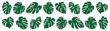 Set Of Tropical Leaves. Vector Illustration