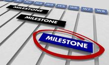 Milestones Project Key Achieve...