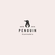 Penguin Cannabis CBD Oil Hemp ...