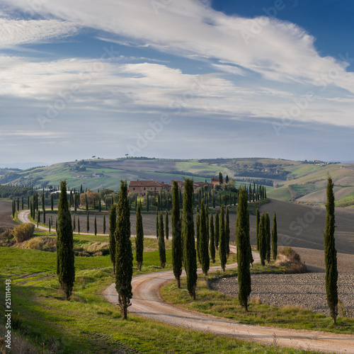 Foto  Landscape with cypress and road in valley